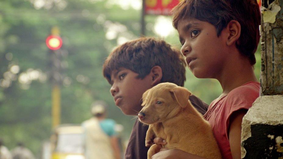 https://cdn.tamilspark.com/media/17250jry-crows_egg_film.jpg