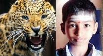 12 years old boy escaped from leopard