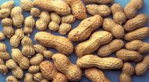 Health benefits of eating peanuts in tamil