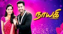 sun-tv-nayaki-serial-vidya-pradeep-modern-photos