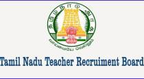 teacher-eligibility-test---tamilnadu-gvt