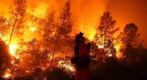 bushfires in austrelia