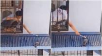 Small boy helps pigeon to drink water viral video