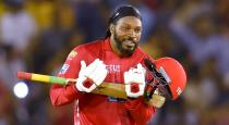 chris gayle ask sorry to fans