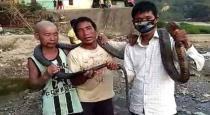 Arunachal Hunters Kill King Cobra For Feast