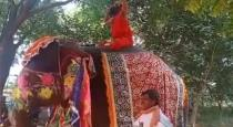 baba-ramdev-fall-from-elephant-while-doing-yoga