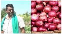 Onion karnataga