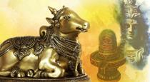 Why should not cross nandhi in temple