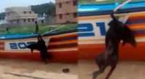 dog-murdered-in-kerala