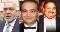 vijay-mallya-neerav-modi-mehul-choksis-disabled-assets