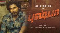 arya-act-as-villain-role-in-pushpa-movie
