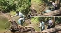 Snake catcher escaped from king copra viral video