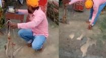 man-died-while-knot-rocky-to-snake-viral-video