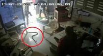 shocking-cctv-footage-shows-maharashtra-man-releasing-s