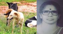 street-dogs-attcked-women-in-kerala