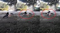 Crow drink water from bottle viral video