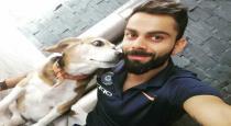 virat-kholis-dog-passed-away