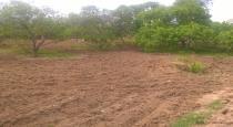 gaja-collapsed-on-village